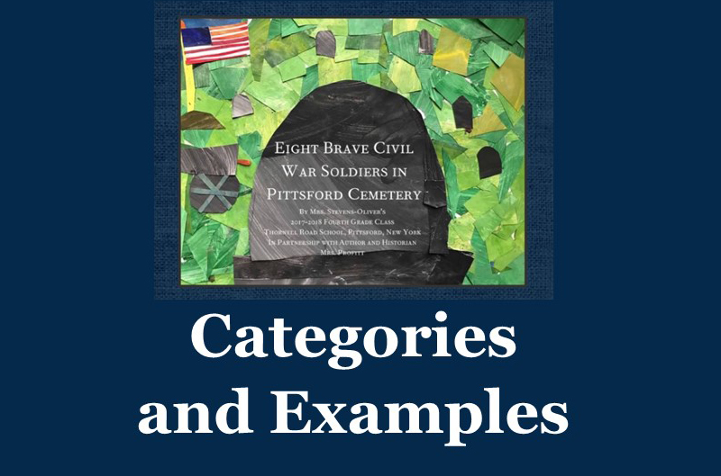 Categories and Examples